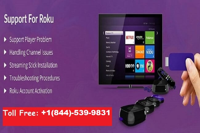 Technical Support for Roku,Printer,Mac,PC,Outlook,Netgear| 18445399831