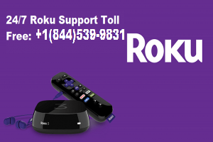 Roku Technical Support