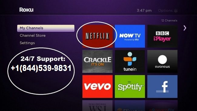 Unable to Watch Netflix on Roku