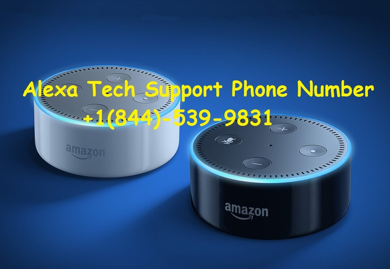 Contact Echo Alexa Tech Support Number